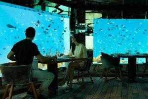 Underwater Restaurant at Anantara, Maldives.