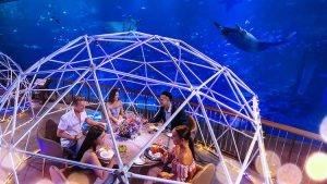 Underwater dining at Resorts World Sentosa.